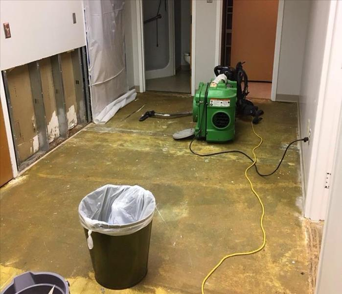 Cut and containment for mold remediation