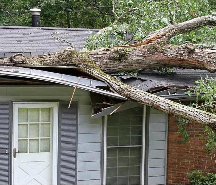 A tree falling on a house