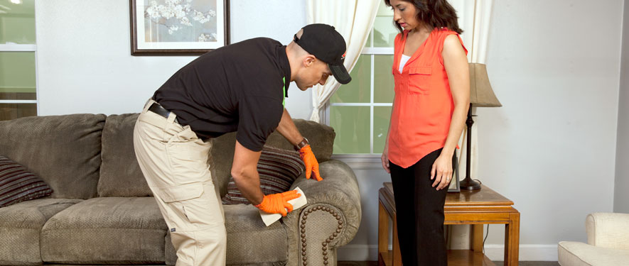 Germantown, TN carpet upholstery cleaning